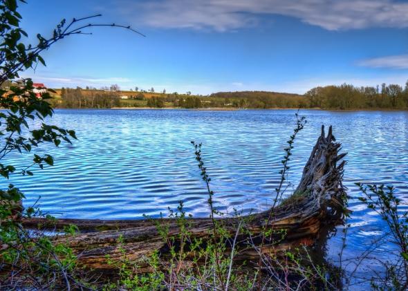 Ayton Saugeen river